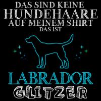 Shiba Inu Glitzer Damen T-Shirt Spruch Geschenk Idee Rasse Hunde Besitzer Lustig